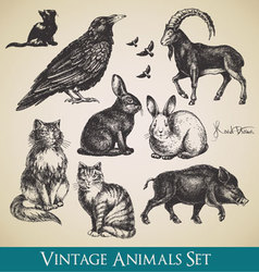 Vintage animals vector