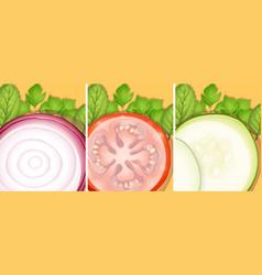 Fresh slices of vegetables vector