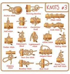 Set of rope knots hitches bows bends vector