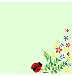 Floral card colorful flowers leaves and ladybug de vector