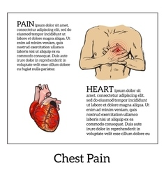 Pain in the heart of a man vector
