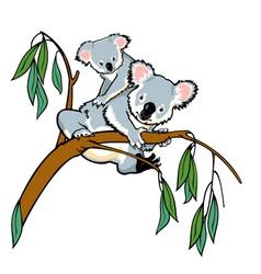Koala with joey vector