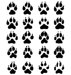 print of dogs paws vector image vector image