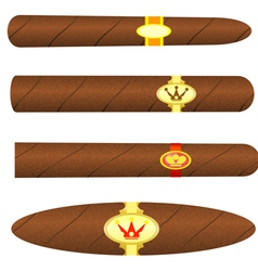 Set kubinskiyh cigars on white background vector image vector image