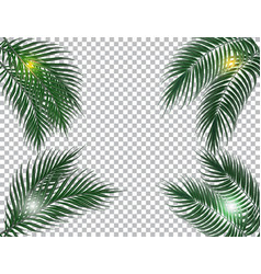tropical dark green palm leaves on four sides sun vector image vector image
