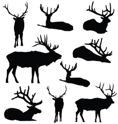 Elk silhouette deer animal digital clip art vector
