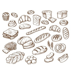 Bread on white background vector