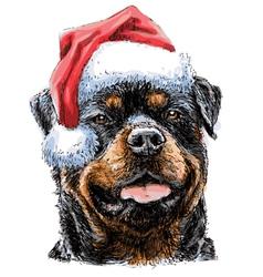Rottweiler 03 vector image