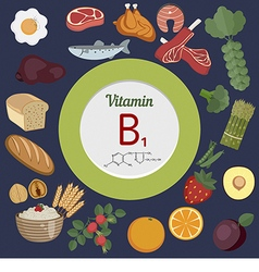 Vitamin b1 or thiamin infographic vector