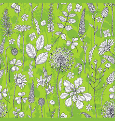 Seamless pattern with wildflowers on green vector