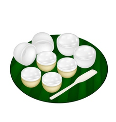 Thai dessert of coconut pudding on banana leaf vector