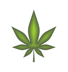 cannabis leaf isolated hemp on white background vector image vector image