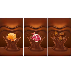 chocolate splash with caramel coffee pomegranate vector image