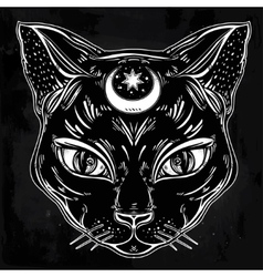 Black cat head portrait with moon vector