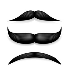 mustache isolated on white black vintage vector image vector image