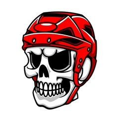 Skull in hockey helmet vector