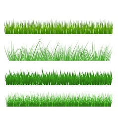 green grass and field patterns vector image