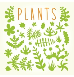 Hand drawn doodle plants vector