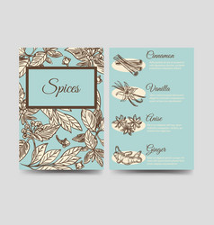 Popular spice flyers template vector