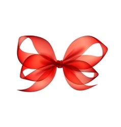 Red transparent bow top view close up isolated vector
