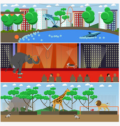 Set of dolphinarium circus and zoo vector