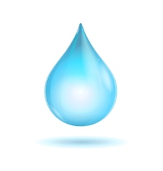 Water transparent drop vector