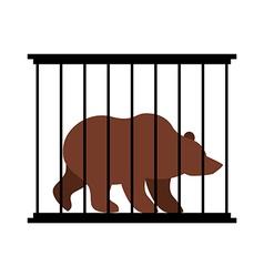 Bear in cage animal in zoo behind bars big beast vector