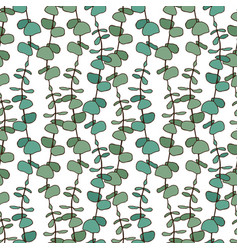 Eucalyptus leaves pattern seamless background for vector