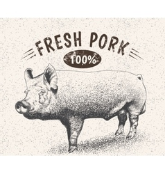 Vintage label with pig vector