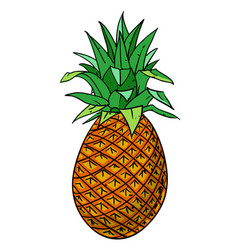 cartoon image of pineapple vector image