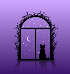 Cat in the window vector