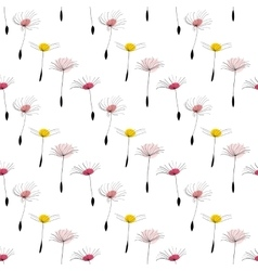 Dandelion seeds on white background vector image vector image