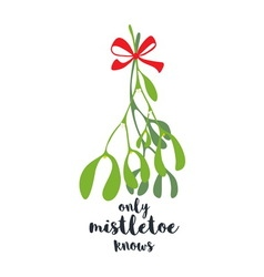 Only Mistletoe Knows vector image vector image