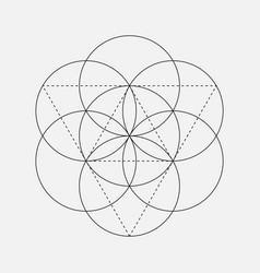 Flower of life sign geometric symbol vector