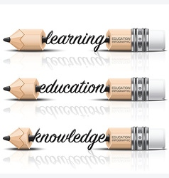 Education and learning step infographic with carve vector