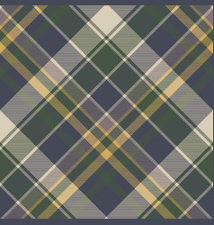 green blue classic check plaid seamless pattern vector image vector image