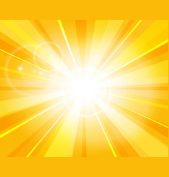 sun beams pattern vector image vector image
