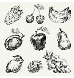 Set of fruits freehand drawing vector