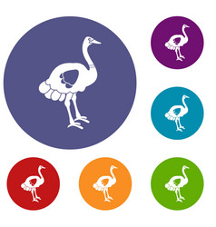 Ostrich icons set vector