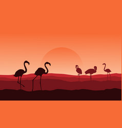 silhouette of flamingo on desert landscape vector image vector image