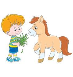 Boy feeds a pony vector