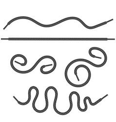 Set of grey shoelace vector