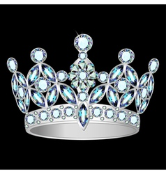 Women silver crown vector