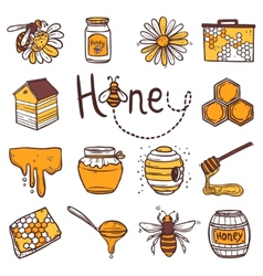 Honey icons set vector