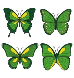Set of green butterflies vector image