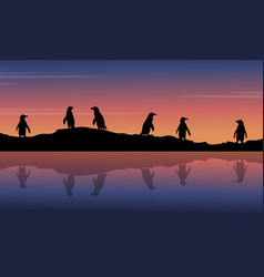 At night scenery with penguin silhouettes vector