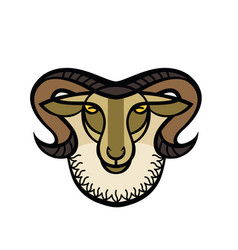 Drawing head of horned ram vector