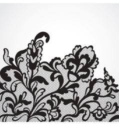 lace ornament vector image vector image