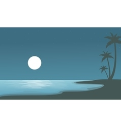 Beach at night with moon of sulhouettes vector image