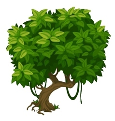 Green tree with lush foliage closeup vector